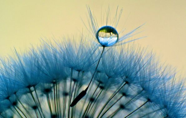 Morning Dew: God and Time